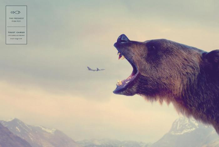 tci_hunters-bear-aot.jpg